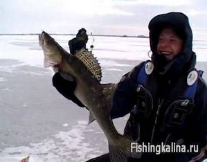 Зимняя рыбалка на Волге на судака