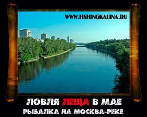 Майская рыбалка на леща в Москве-реке