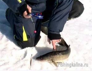 Катушка инерционная Удача для рыбалки зимой