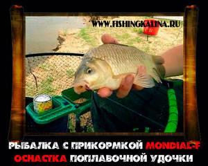 Оснастка поплавочной удочки для успешной рыбалки