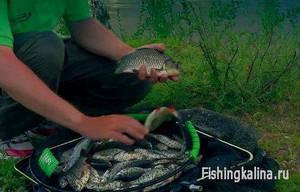 Рыбалка на поплавочную удочку с прикормкой Mondial-F