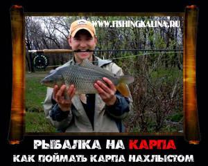 Карповая рыбалка нахлыстом