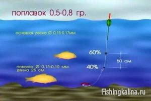 Отгрузка оснастки на карповой поплавочной рыбалке