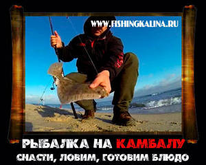 Камбала морская ловля на море