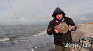 Рыбалка на Балтийском море на глосика