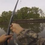 Как ловить рыбу на поплавочную маховую удочку