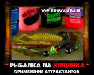 Как испоьзовать аттрактанты для ловли хищной рыбы