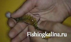 Крутолобый офсетник на приманке при хватке рыбы