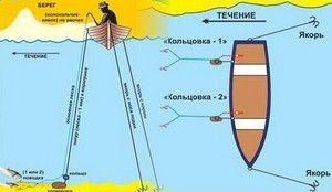Как ловить сазана с лодки на кольцовку