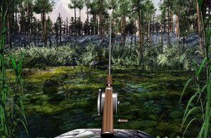 Ловля рыбы на озере играть