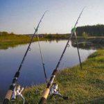 Фидерная рыбалка на Нижней Волге осенью