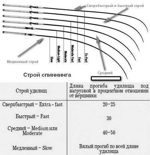 Строй фидерного удилища Что выбрать новичку: быстрый строй или параболик